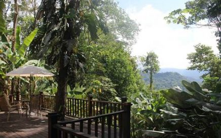CASA BOSQUE – 2 Bedroom Mountain View Home with Big Deck!!!