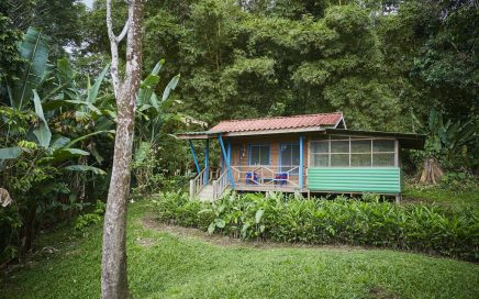 1.45 ACRES – 1 Bedroom Cabin With Ocean And Mountain Views, Very Usable Land, Waterfall Acess!!!