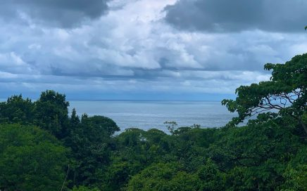 11 ACRES – Very Usable Ocean View Acreage With Jungle And Easy Access!!!!