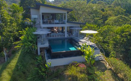 8.6 ACRES – 6 Bedroom Luxury Estate, 4 Bedroom Main Home, 2 Bedroom Guest Home, Ocean View!!!