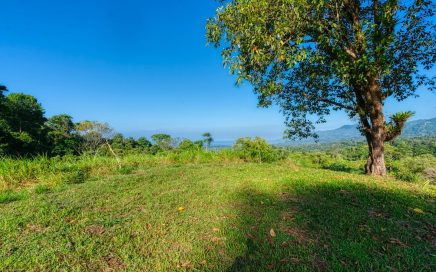 33 ACRES – Sunset Ocean View Acreage With Multiple Building Sites Perfect For Private Estate Or Business!!!