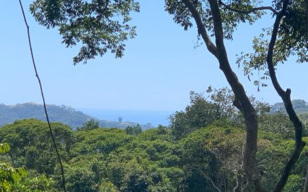 4.2 ACRES – Private Acreage With Ocean And Mountian Views In Lagunas With Power And Legal Water!!!