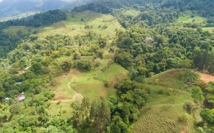13.8 ACRES – Very Usable Acreage W/ Creek, Spring, Fruit Trees, Jungle, Mountain And Ocean Views!!!