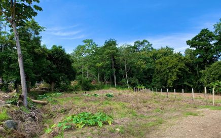 0.25 ACRES – Flat Buildable Lot In Center Of Uvita Walking Distance To Everything!!!!