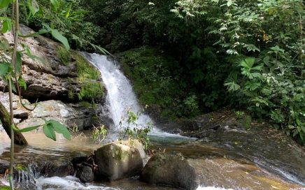 2 ACRES – Amazing Property With Easy Access And 400 Ft Of River Frontage!!!!