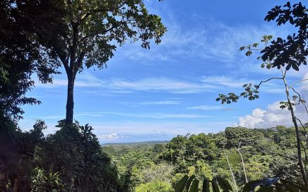 3.9 ACRES – Very Flat And Usable Acreage With Creek And Legal Water 5 Min From Center Of Uvita!!!!