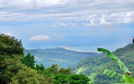18.59 ACRES – Ocean And Waterfall View Coffee Farm!!!!