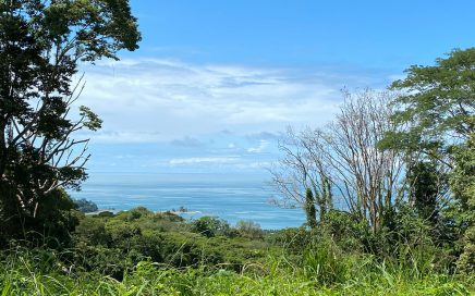 1.24 ACRES – Beautiful Ocean View Property With All Year Creek And Waterfalls!!!!