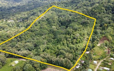 29 ACRES – Ocean View Acreage With Sprint, Creek, Legal Water, And Electric!!!!