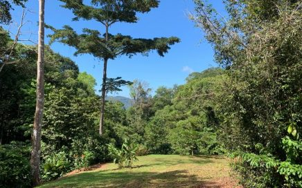 12.12 ACRES – 3 Building Sites With A Creek And Municipal Water!!!!