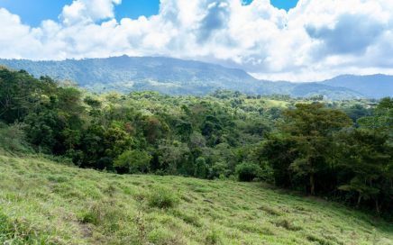 36 ACRES – Usable Acreage With Ocean Views, Creeks, Waterfall!!!!