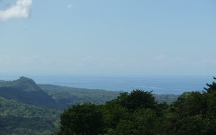 1.2 ACRES – Beautiful Ocean View Lot Flanked On Both Sides By Protected Nature Reserves!!!!