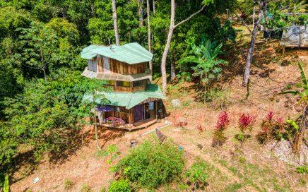 11 ACRES – 1 Bedroom Cabin, Open Farm Land, Springs, River!!!