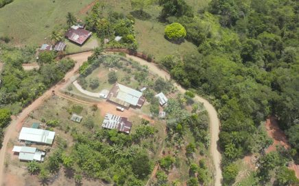 1 ACRE – 4 Bedroom 1 Bath Tico Style Home On Land With Tons Of Fruit Trees!!!