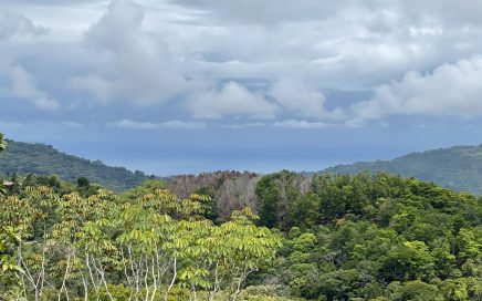 18.75 ACRES – Ocean View Acreage With Multiple Building Sites, Power, Legal Water, Easy Access!!!