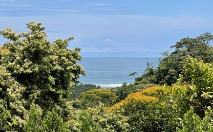 4.12 ACRES – Ocean View Lot With 2 Building Sites Surrounded By Rainforest, Great Access, Legal Water!!!