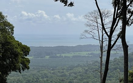 1.23 ACRES – Ocean View Lot With 2 Building Areas In gated Community With River And Waterfall Access!!!!