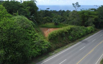 0.34 ACRES – Ocean View Lot With Highway Frontage Perfect For Commercial Development!!!!