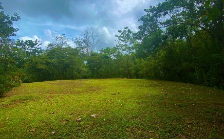 14 ACRES – Beautiful Mountian View Aceage With Multiple Building Sites, Mature Fruit Trees, And A Sream!!!!
