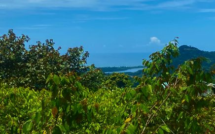 1.6 ACRES – Ocean And Mountain View Property In Gated Community With 2 Building Sites!!!