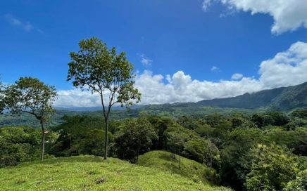 4.95 ACRES – Beautiful Open Pasture Mixed With Jungle, Creek, Amazing Mountain Views And Diamante Waterfall Views!!!!