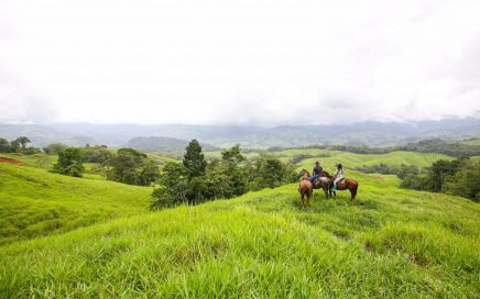 211 ACRES – Gently Rolling Hills On This Mountain View Acreage With Creek Crossing Through The Property!!!!