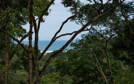 1.8 ACRES – Private Wooded Lot With Lush Ocean View!!!!