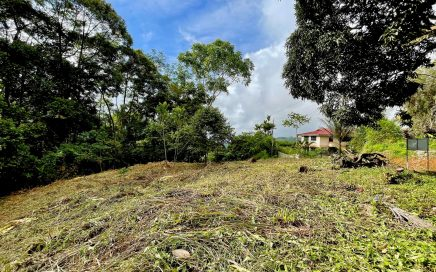1.45 ACRES – Legal Water, Electric, Fiber Optics, Mountain Views, and Small Ocean View, Great Community, 10min to Dominical Beach!!